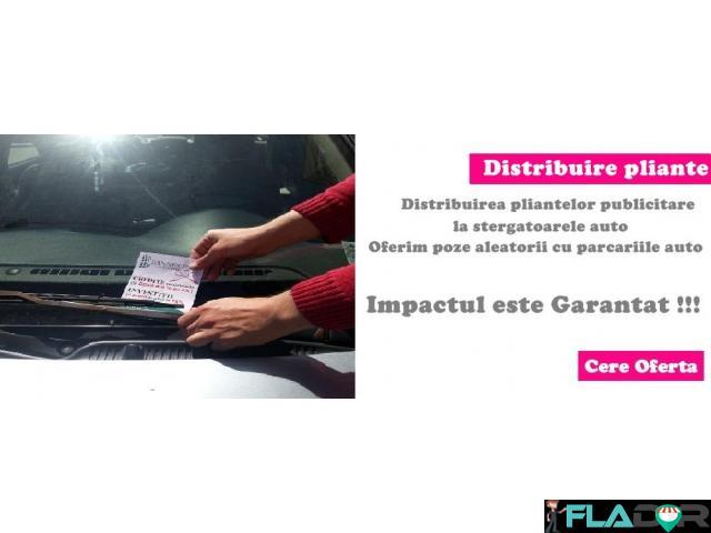 Distribuire Pliante publicitare - 3/4
