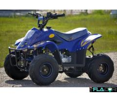 Atv Panzer 125cc  Roti De 6 Inch - Imagine 4/5