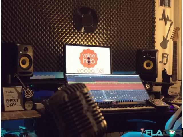 Studio de inregistrari VoiceOver / Spoturi Audio / Reclame - 3/4