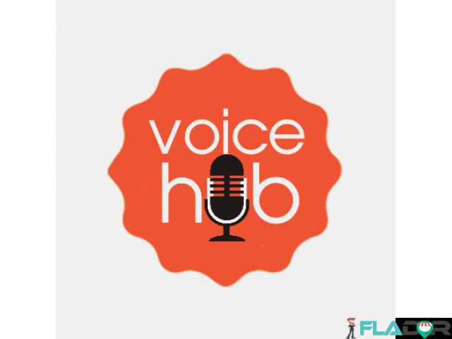 Studio de inregistrari VoiceOver / Spoturi Audio / Reclame - 4/4