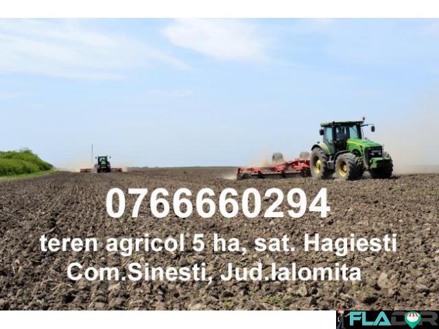 Teren Agricol Hagiesti 5HA - 1/1