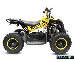 ATV ECO AVENGER PRIME ELECTRIC 1060W