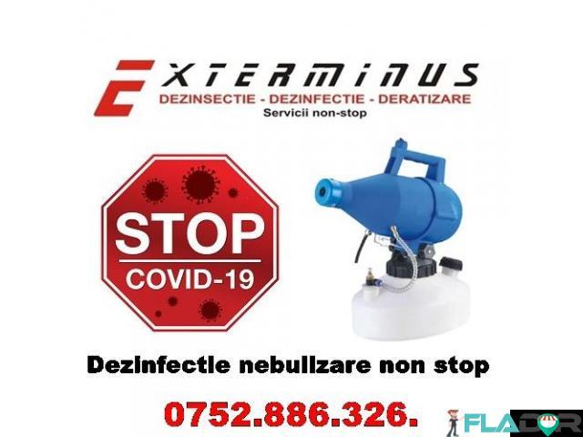 Dezinfectie-Dezinsectie-Deratizare non stop - 1/3
