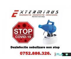 Dezinfectie-Dezinsectie-Deratizare non stop - Imagine 1/3