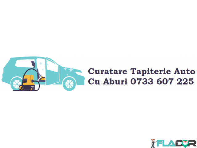 Curatare tapiterie cu aburi Spalatorie tapiterie auto - 2/6