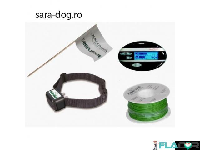 Dispozitiv electronic profesional perimetru caini NUM'AXES Canifugue MIX FUG1031 - 1/1