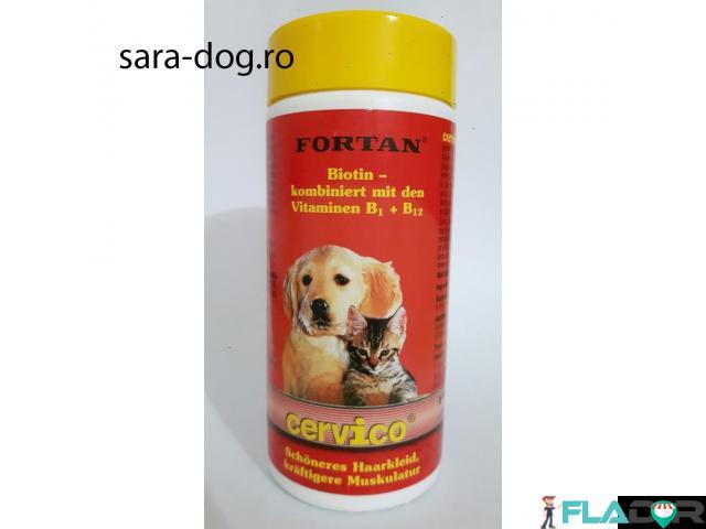 Supliment pentru piele si blana caini Cervico Fortan - 1/1