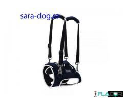 Dispozitiv profesional pentru caini cu displazie de sold