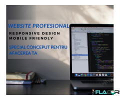 Realizare WebSite, Prezenta Online - Web Dev Arad