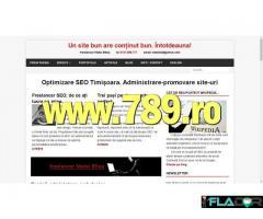 Optimizare SEO Timisoara promovare site-uri