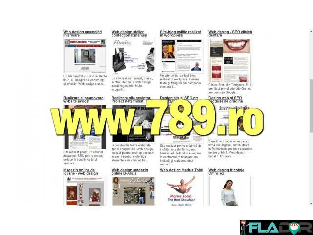 Pagini de internet, web design și SEO - 3/3
