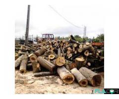 lemne de foc si deseuri !